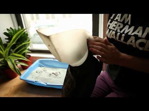 Un gadget muy útil para limpiar las necesidades de los gatos