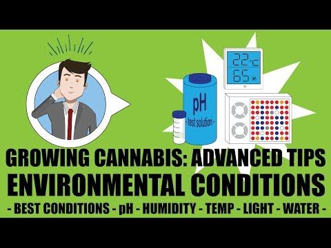 Best Weed Environment for pH, Humidity, Temperature - Growing Cannabis 201: Advanced Grow Tips