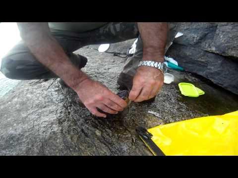 La pesca del sargo con boya