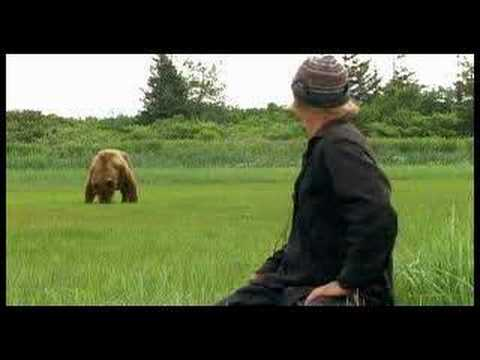 grizzly man grizzlyman
