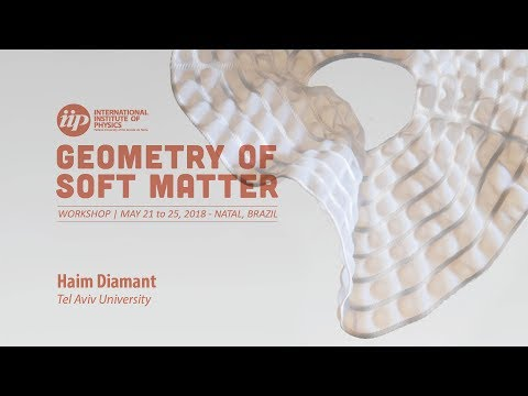 Hyperuniform dynamic structures of forced colloids - Haim Diamant