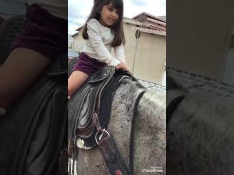 Cavalgando no cavalo do primo em Quixabeira Bahia
