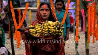 image of Woman pays obeisance to Sun God during Chhath Festival in Darjeeling