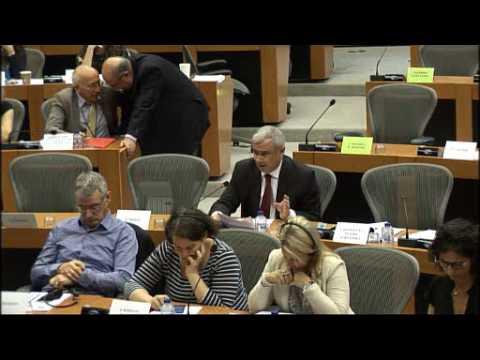 Pedro Silva Pereira Comissão do Comérico Internacional sobre acordo UE-Japão