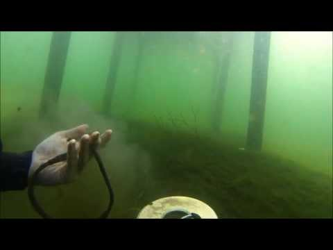 June-8-2013  Diving with the Tesoro tigershark (metal detecting)