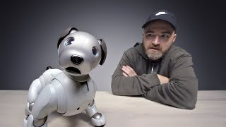 Video The $3000 Sony Aibo Robot Dog MP3, 3GP, MP4, WEBM, AVI, FLV Februari 2019