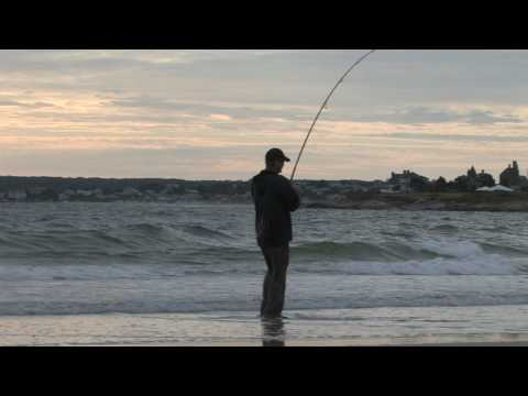 Crane Beach, MA Bluefish – Aug 2009