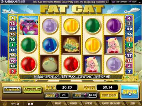Miamiclubcasino.im - Fat Cat (5 Reel Slot BONUS Review)