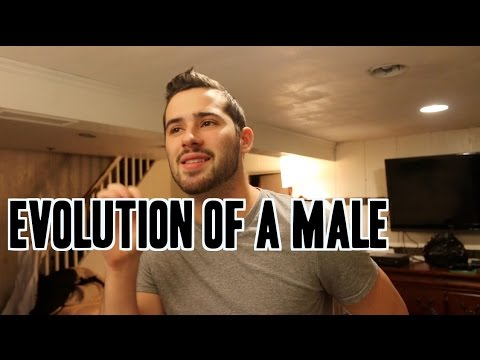 Evolution of a Male