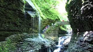 Watkins (CO) United States  city pictures gallery : Watkins Glen and more from the Finger Lakes Area in HD