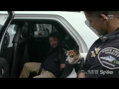 Dog ignores owner who is going to jail