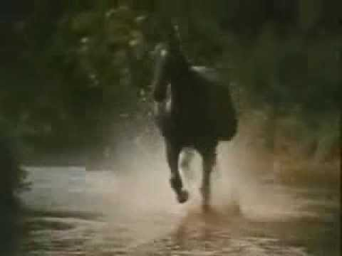 Black Beauty Theme (Galloping Home) - Denis King 1972