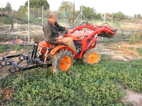 Kubota B6000D trabajando con cultivadores