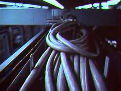 Art - The Hello Machine (Carroll Ballard)