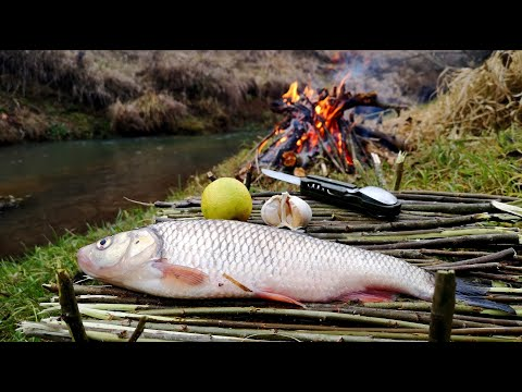 Cu TRENUL la PESCUIT - MĂNÂNC ce PRIND - Pescuim pe un mic PÂRÂU - Decembrie 2020