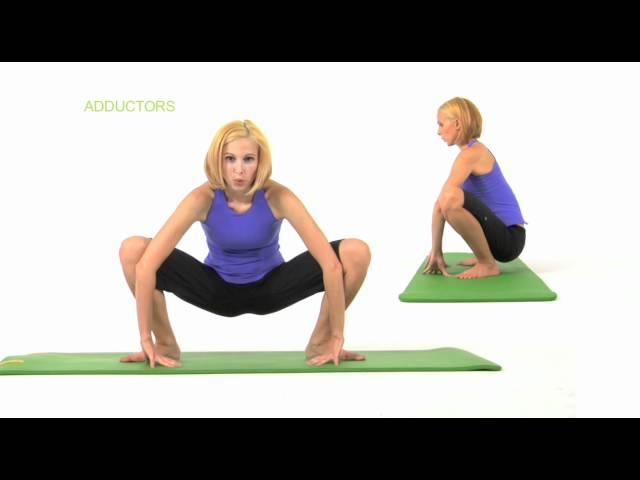 ストレッチ 内転筋(ももの内側の筋肉/リンパ)mov
