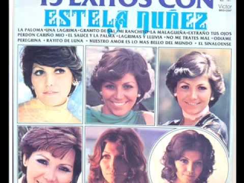 Lagrimas y lluvia - Estela Núñez