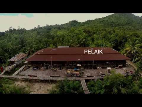 Sekilas Taman Nasional Betung Kerihun dan Danau Sentarum
