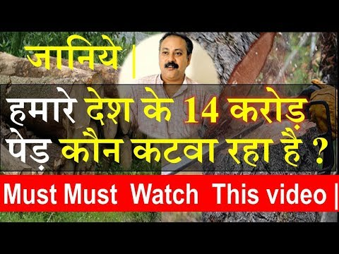 Rajiv Dixit : Exposed Who is Cutting Down 14 Crore Trees in india ? Must Watch.