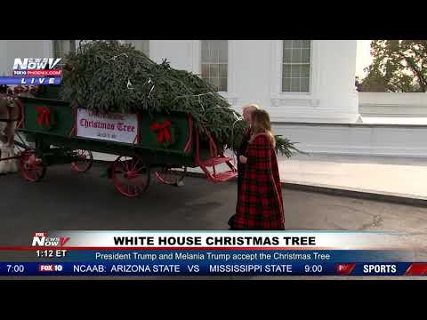 WATCH: President Trump and Melania Trump Welcome The 2018 White House Christmas Tree