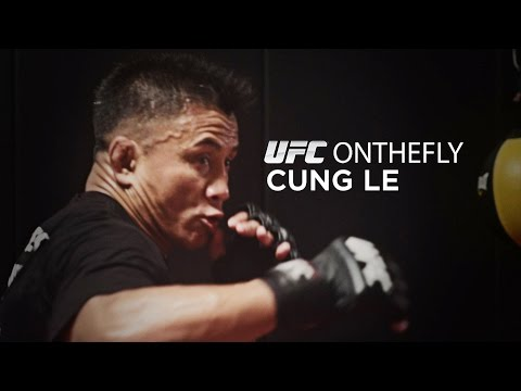 fly - On this episode of UFC ON THE FLY, MMA legend Cung Le takes aim at his next action film role, while remaining focused on his two biggest priorities: family and fighting in the UFC. Our cameras...