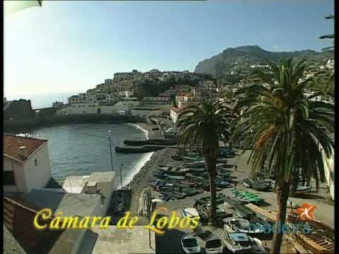 Go To: Curiosidades sobre a Madeira