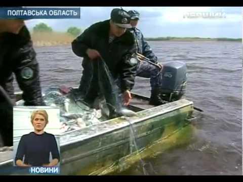рыбалка браконьеры видео сибирь