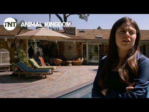 Animal Kingdom 2.09 Preview