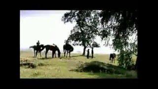 """Tatar-Bashkir Song """"Tulpar Atım"""" by Aydar Ğalim Tatar-Turkish subtitles 1. Atlar kürsäm oça küňlem, Xıyal qoşım qanat qağa."""