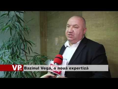 Bazinul Vega, o nouă expertiză