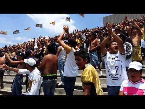 La Rebel - Pumas de mi vida Pumas vs Dorados - La Rebel - Pumas