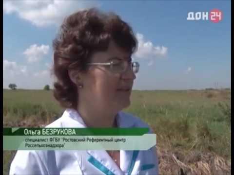 О выявлении неиспользованных земель сельскохозяйственного назначения