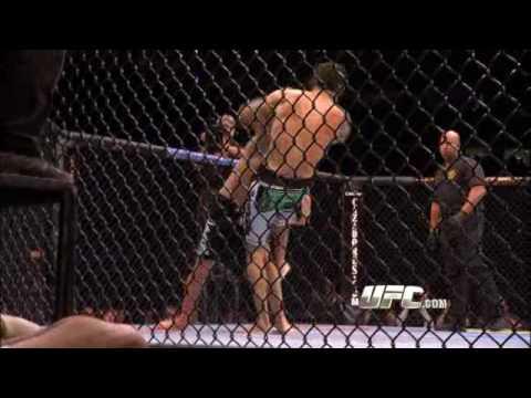 Joe Rogan breaks down upcoming fight Hughes vs Almeida