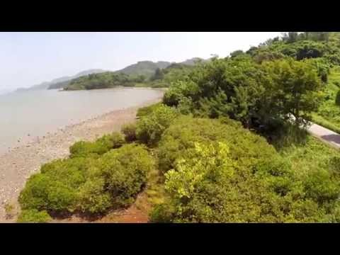 Tai Po District Drone Video
