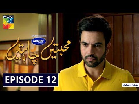 Mohabbatain Chahatain Episode 12 | Digitally Presented By Master Paints | HUM TV Drama | 19 Jan 2021