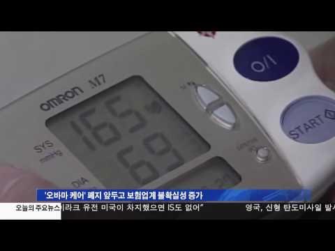애트나, 휴매나 합병 무산 1.23.17 KBS America News