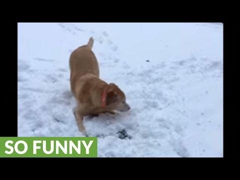 giochi-nella-neve