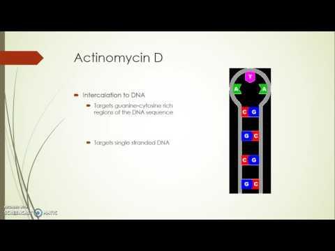 Actinomycin D Informational Video