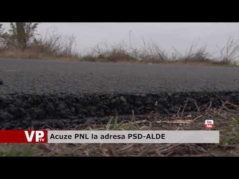 Acuze PNL la adresa PSD-ALDE