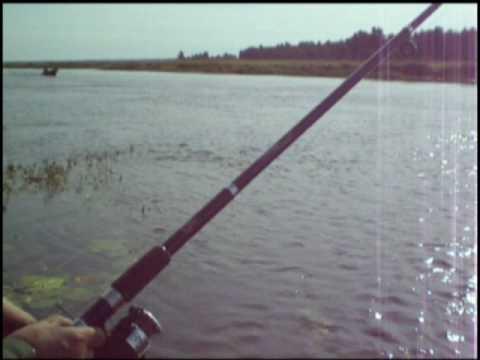 где рыбалка в шлиссельбурге