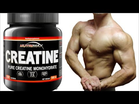 Taking Creatine to Make Muscle and Strength Gains