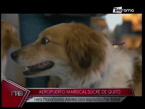 Aeropuerto Mariscal Sucre de Quito 1era plataforma aérea con espacios Pet Relief