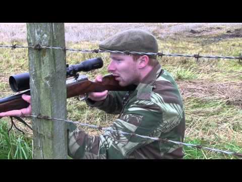 The Shooting Show - red stags on high and low ground
