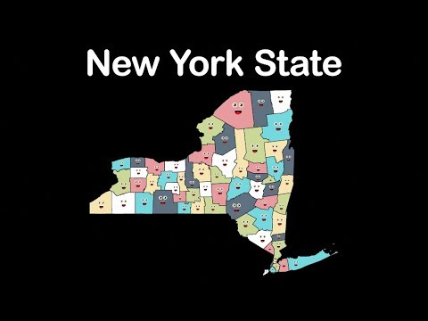 New York State/New York Counties/New York State Counties