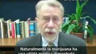 2-3 La vera storia della Marijuana.wmv