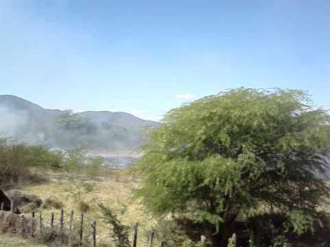 Moradora grava incêndio às margens do Rio Paraguaçu em Itaetê