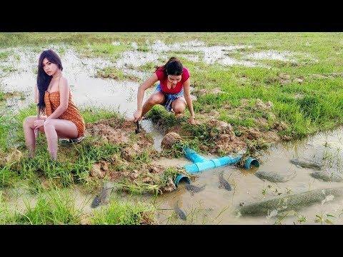 Video Amazing Fishing at Battambang - How to Fishing At Cambodia - By Pailin Ever download in MP3, 3GP, MP4, WEBM, AVI, FLV January 2017