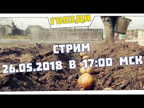 Весенний стрим. 26.05.2018 в 17:00 мск. видео