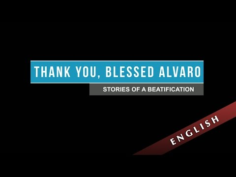 Thank you, Blessed Álvaro. Stories of a beatification (ENGLISH)