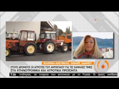 Στους δρόμους οι αγρότες του Αμύνταιου | 24/01/2020 | ΕΡΤ